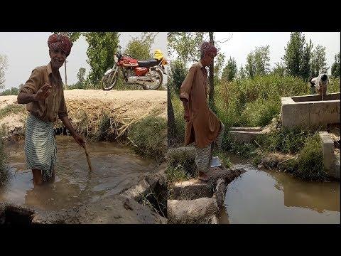 Sohna Pind Gujjran Da village life in pakistan Episode 10