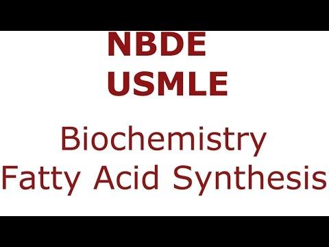 Fatty Acid Synthesis - NBDE/USMLE - Biochemistry