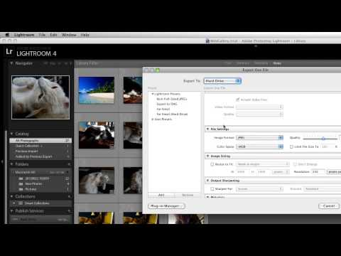 How to Convert RAW to JPEG in Lightroom