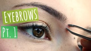 How To Eyebrows Pt 1 Plucking Trimming