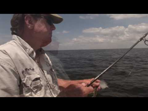 Fishing Florida's shallow water grass flats using live baits with Capt Pat McGriff.