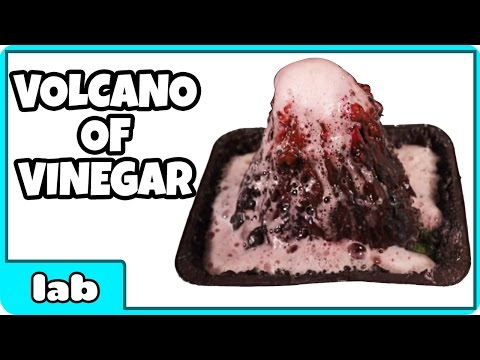 Vinegar Volcano Science Experiment by HooplakidzLab