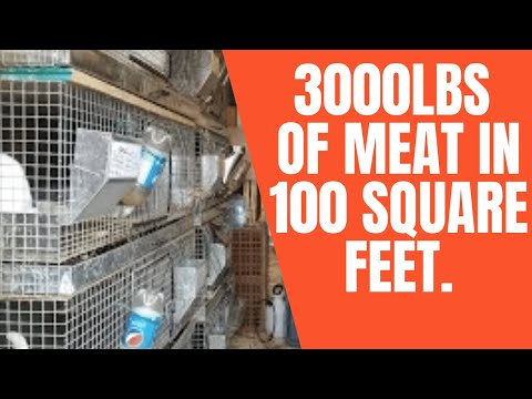 Urban Farming: 3000lbs of Food from 100 Square Feet.
