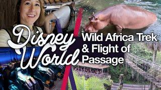 Wild Africa Trek & Flight Of Passage! Disney World #10 | Animal Kingdom | Thisnatasha | Oct 2018