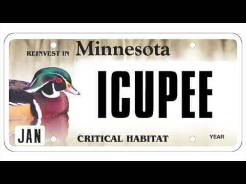Banned Minnesota License Plates