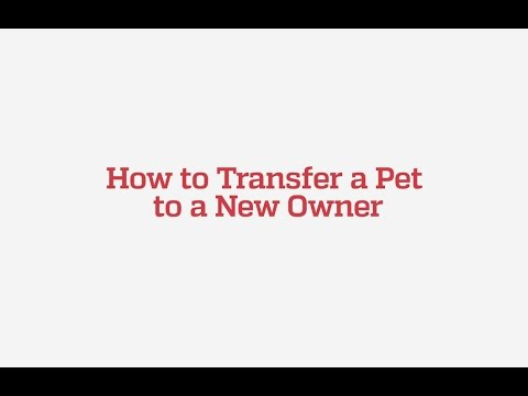 How to Transfer a Pet to a New Owner