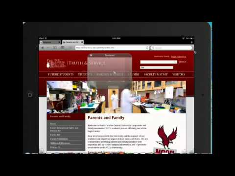 Demo of puffin browser