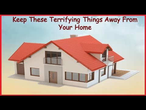 Keep These Terrifying Things Away From Your Home