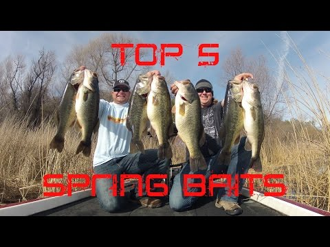 Top 5 Spring Baits to Find Big Bass