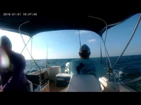 King Mackerel 2 Fishing Emerald Isle, NC