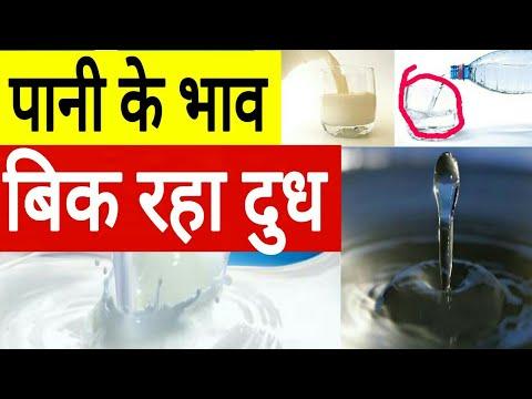 पानी के भाव बिक रहा गाय का दूध | cow palan in india | dairy farming / रुला देगा ये विडीयों आपको