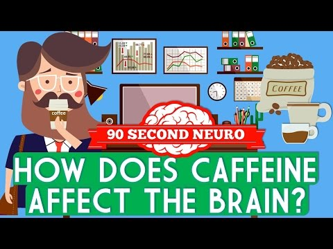 How does caffeine affect the brain?