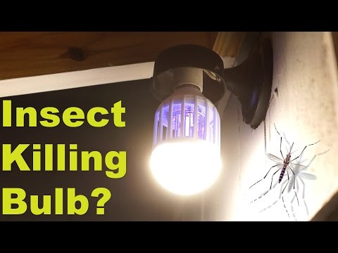 Can this 'normal' light bulb kill mosquitoes? -  Flying Insect, Moth & Wasp  Zapper Test & Review