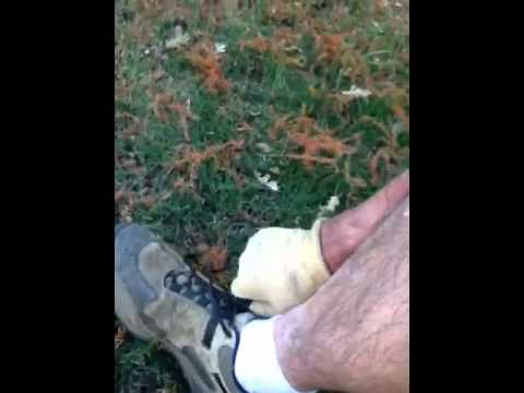 Cleaning Dog Poop Off Shoe- How To
