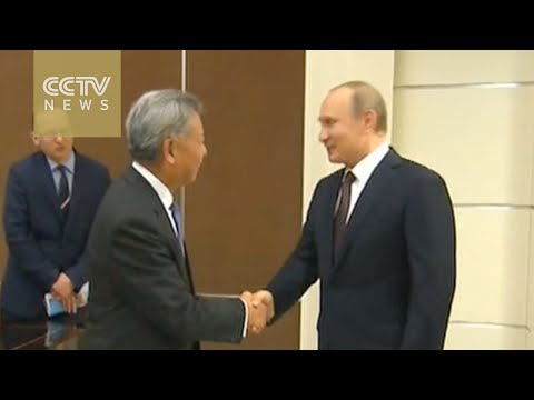 Russia-ASEAN Summit: Plenary meeting starts on second day