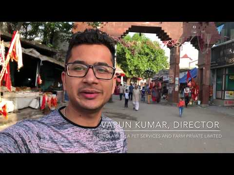 Bhola Shola Vlog 28.04.2018 - Mela Pilgrimage to Baba Balak Nath Ji