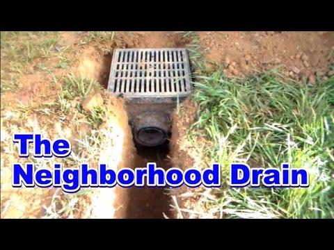 Back Yard Strom Drain collects neighborhood water