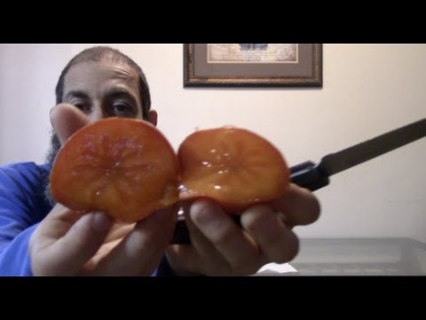 How to quickly ripen persimmons