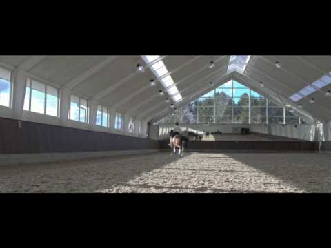 Xxx Mp4 On The Road To The World Breeding Championships Part 1 Simone Pearce 3gp Sex