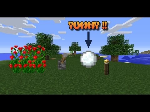 Minecraft | 6 Things You Should Rename