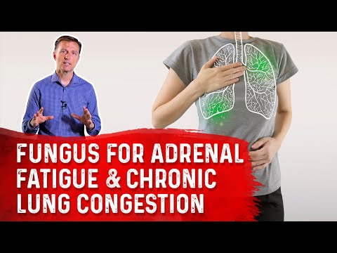 Amazing Fungus for Adrenal Fatigue & Chronic Lung Congestion