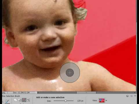 Cutting and Pasting in Photoshop Elements, Part 1