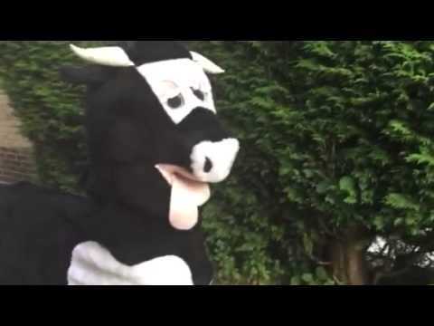 2 Person Panto Cow sold by www.fancydressbash.co.uk