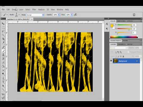 new brushes in photoshop