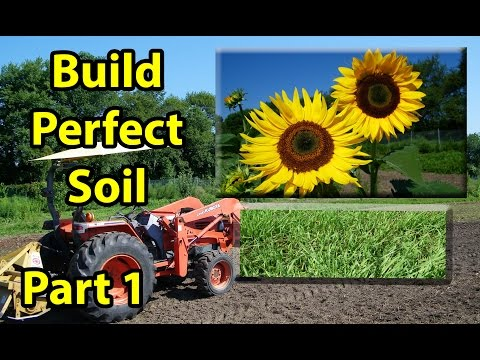 HOW to BUILD, EASY, CHEAP, Healthy Organic Garden Soil with 20,000 Sunflowers & Winter Rye Mix #1