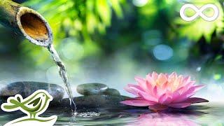 Relaxing Piano Music: Relaxing Music, Sleep Music, Meditation Music, Spa Music ★109