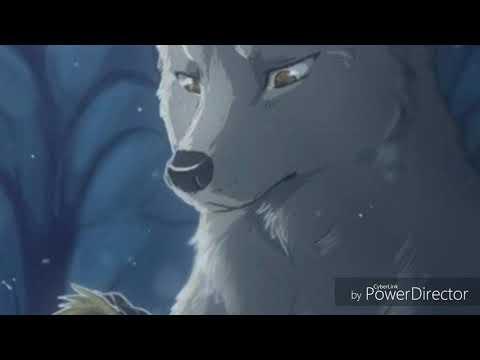 Anime wolves ~I hate you I love you~