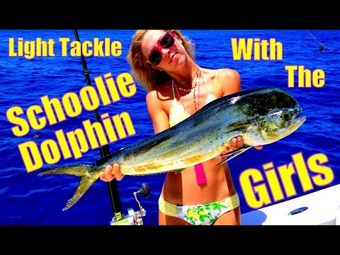 Catching Schoolie Dolphin on Light Tackle with the Girls