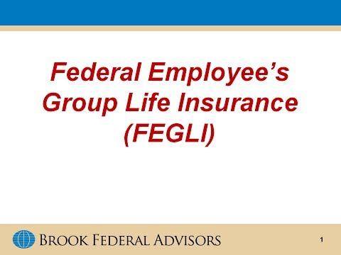 Federal Employee's Group Life Insurance (FEGLI)