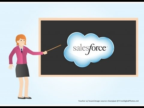 Salesforce environment, licences and account creation