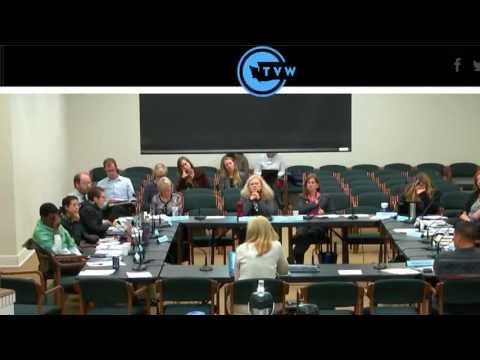 Children's Mental Health Workgroup 10 13 16 Testimony