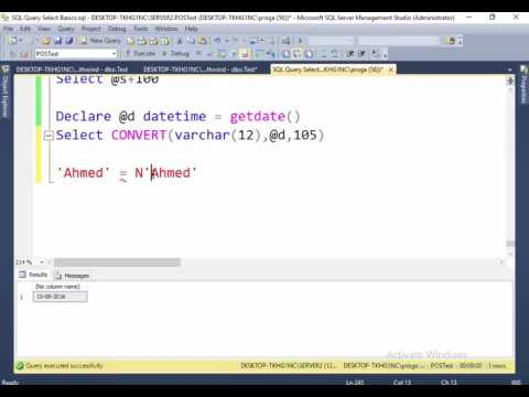 17 N char in SQL Query