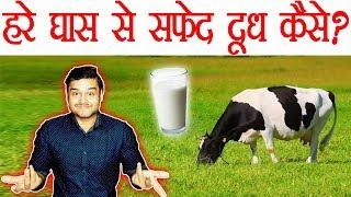 हरा घास सफ़ेद दूध में कैसे बदल जाता है ? Scientific Process of Milk Production Explained - TEF Ep 48