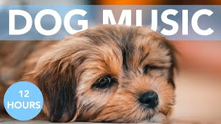 PUPPY MUSIC - 12 Hours of Soothing Lullabies for Dogs & Puppies!