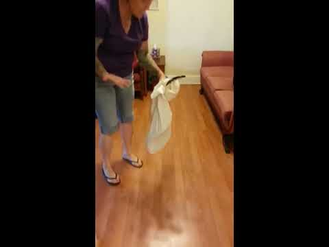 Woman Uses Pillowcase to Catch SixFootLong Snake in Her Living Room
