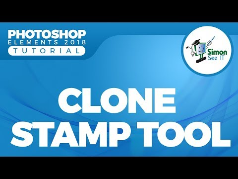 How to Use the Clone Stamp Tool in Adobe Photoshop Elements 2018