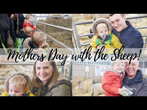 MOTHERS DAY WITH THE SHEEP | CARLY ELLEN