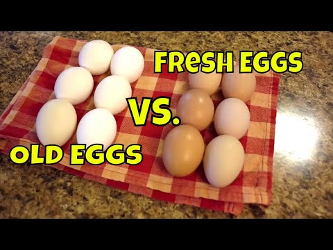 Hard Boiling Fresh Eggs. Homestead Problem SOLVED!!!!