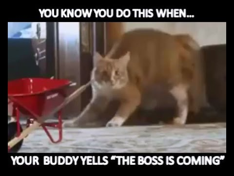 MRW-When The Boss Catches You