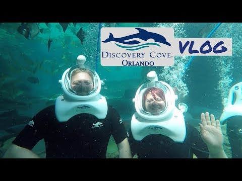 Walt Disney World | 2017 | Day 8 - DISCOVERY COVE & Sea Venture