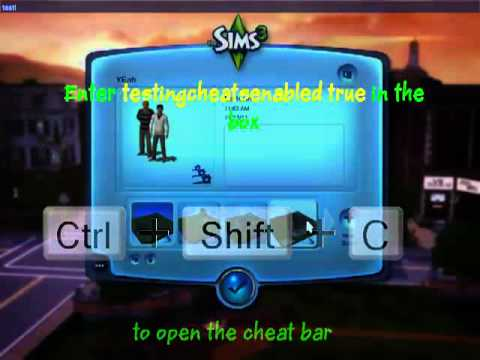 The Sims 3- How to get Unlimited Lifetime Happiness Points