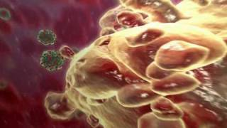 3D Medical Animation ASK Visual Science 2008 Show Reel