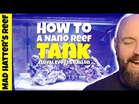 How to Setup a Nano Reef Tank | Fluval EVO 13.5