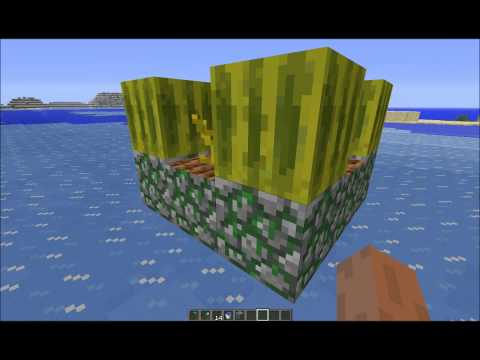 Farmers Tip Of the Day In Minecraft #2 Melons a plenty.