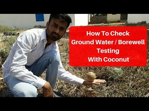 How To Check Ground Water Testing With Coconut   Borewell Drilling   Tubewell