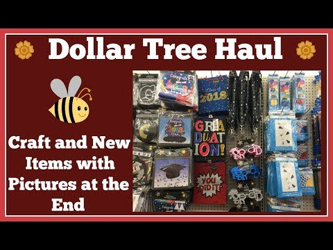 Craft and New Item🤑 Dollar Tree Haul🤑 with Pictures